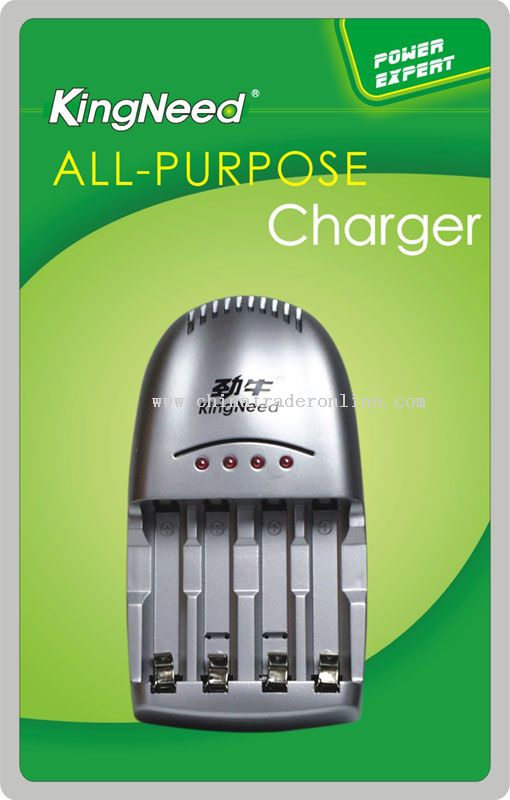 All-purpose charger