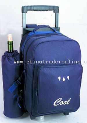 600*600D high density/ulelene COOLER BAGS