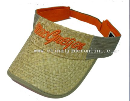ADULT visor