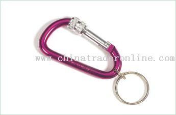 Mini Carabiner Keychain