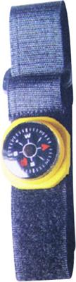 Compass Lanyard