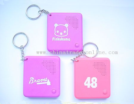 talking and recording keychain from China