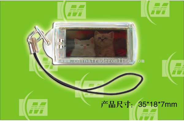 Waterproof Solar Powered Flashing LCD Keychains