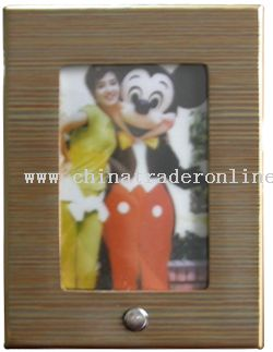 Digital Recording Photo Frame