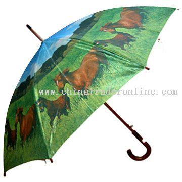 Satin Umbrella from China