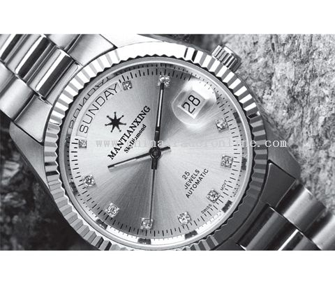 ALL stainless steel watch