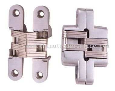 zinc alloy conceal hinge from China