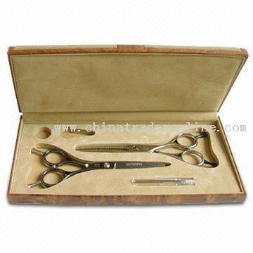 Hair Scissors in Plastic/EVA Carrying Case