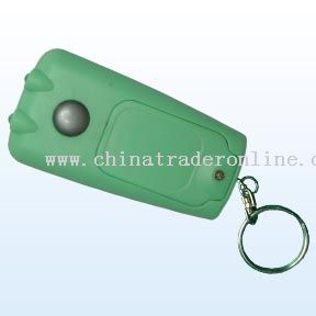 Mobile Torch With Key chain from China