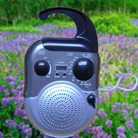 AM/FM Shower Radio from China