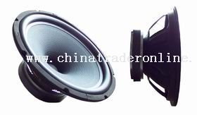 10 inch Single-Point Concentric Loudseaker from China