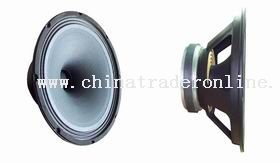 12 inch Single-Point Concentric Loudseaker from China