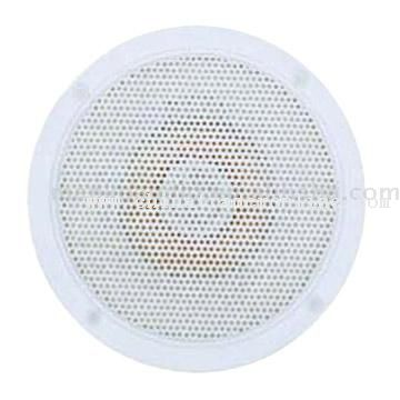 In Ceiling and in Wall Speaker
