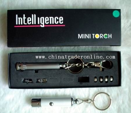 Small LED Flashlight from China