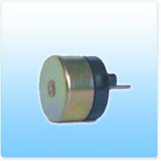 Brushless DC Motor (Minimotor)