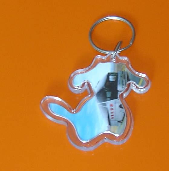 acrylic key-chain from China