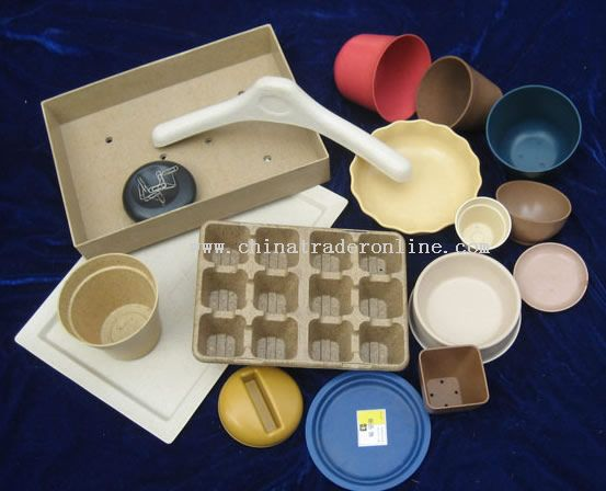 biodegradable flower pot with your favoriate design and color
