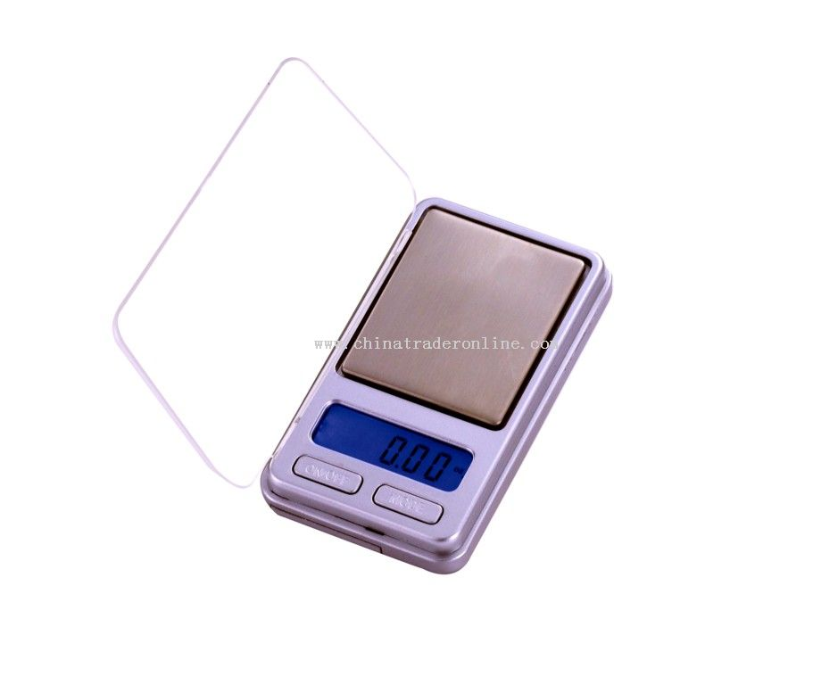 Digital LCD Scale