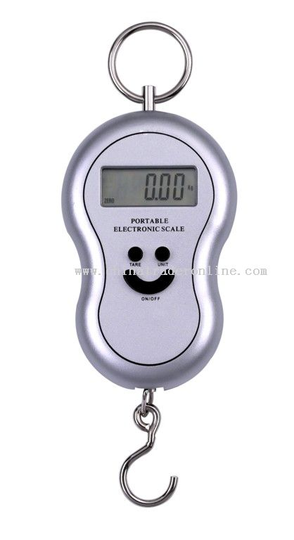 40kg hanging scales from China