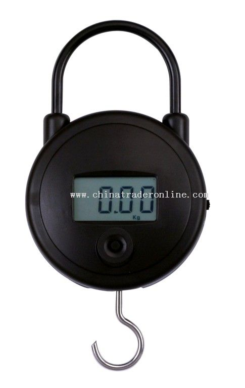 25kg high quality hanging scale