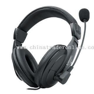 Computer Headphone