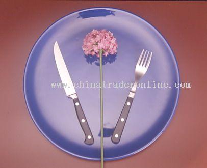 Steak Knife and Fork