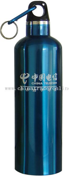 750ml Double-wall stainless steel vacuum bottle