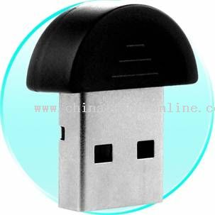 Mini USB Adapter in POP from China