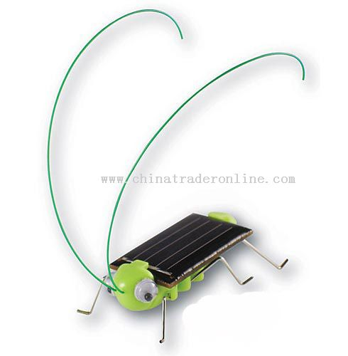 Solar grasshopper,Solar Toy Solar product manufacturer,solar products