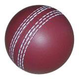 PU Cricket
