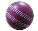 Pu Cricket Ball