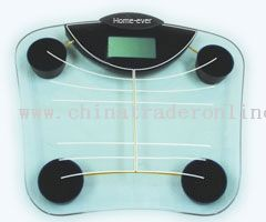 Body Fat/Water Analysis Scale from China