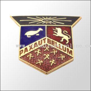 Lapel Pin /Badge from China