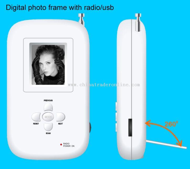 Novelty Digital photo frame with radio