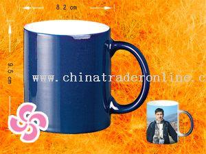 Common coating mug