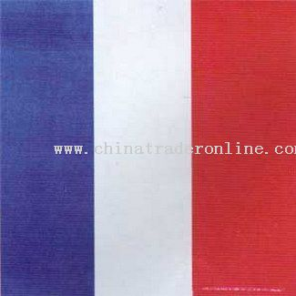 France Flag Bandanas