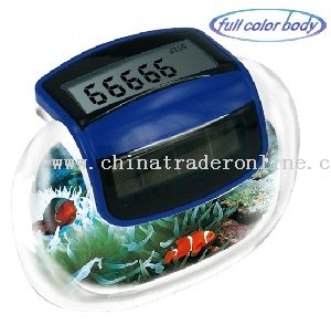 Pedometer with Solar