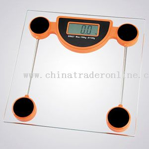 electronic galss scale
