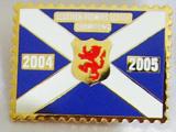 Imitation Cloisonne pins
