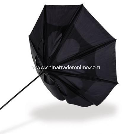Dry Umbrella