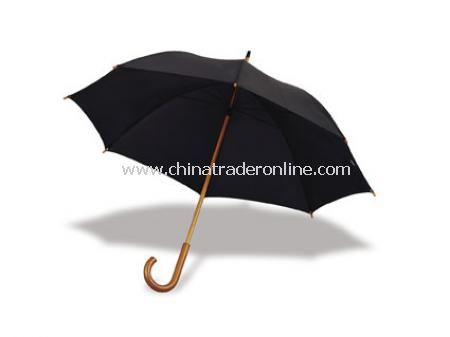 Ozon Umbrella