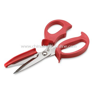 Sea Scissors from China
