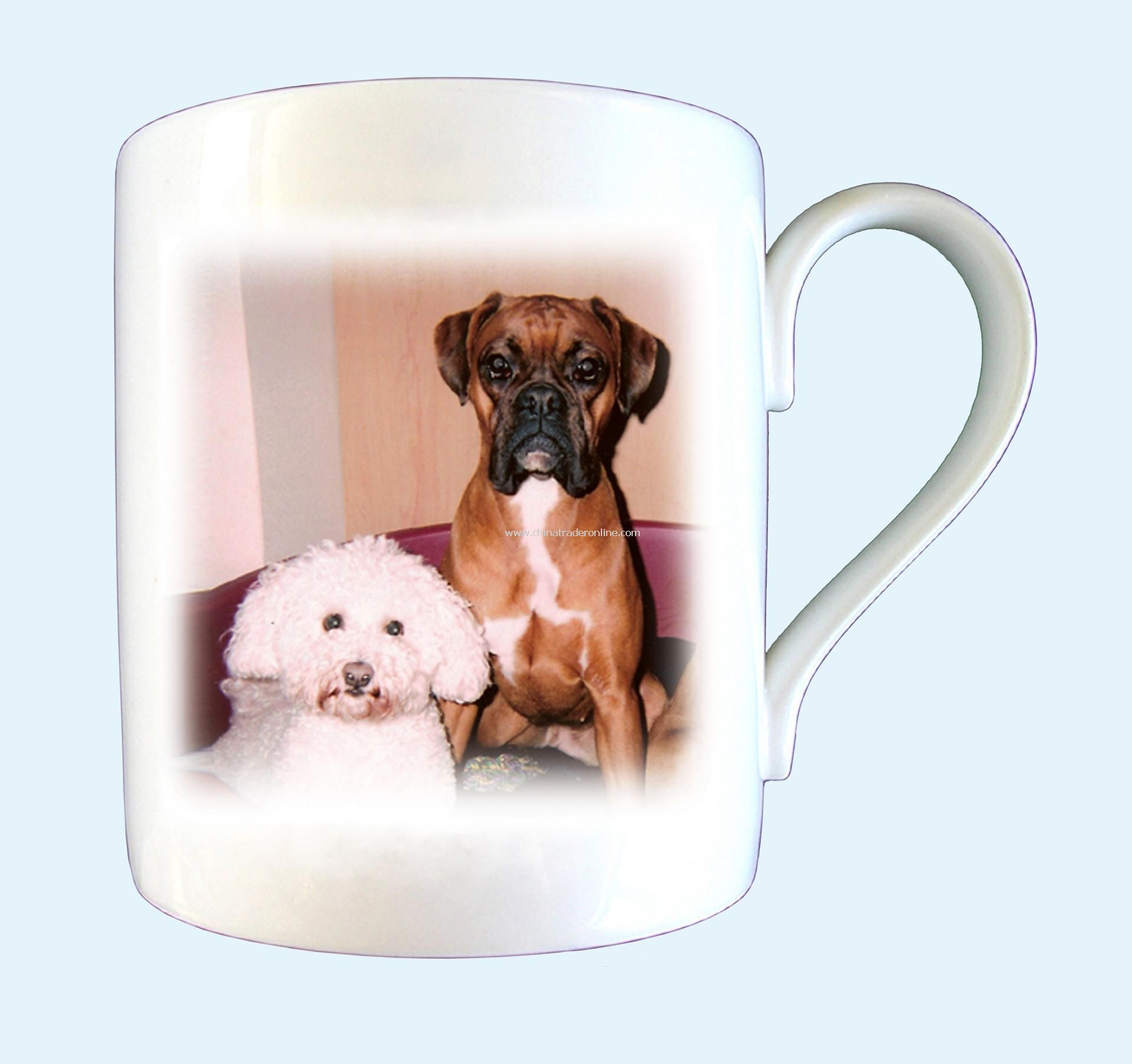Pet Photo Mug from China