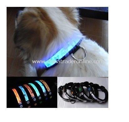 Flash Pet Collar from China