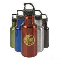 Stainless Steel 17oz Bottle