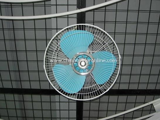 Orbit Wall Fan