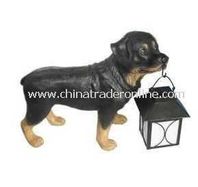 Solar Dog Light, Solar Animal Light, Solar Pet Light, Solar Resin Light, Solar Sculpture Light from China