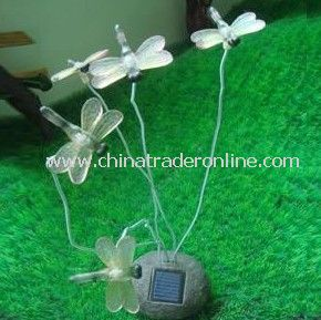 Solar Insect Light, Solar Butterfly Light, Solar Dragonfly Light, Solar Animal Light, Solar Resin from China