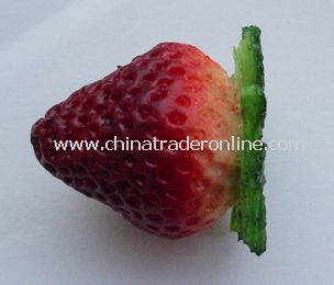 strawberry usb flash drive from China