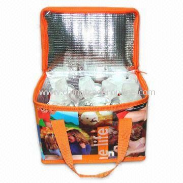 Eye-catching Cooler/Ice Bag, Available in Recyclable and Azo Free Materials, Measures 21 x 14 x 13cm from China